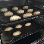 ロールパン 発酵